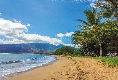 "beach 1630540 1920 400x270 - ""SPADKOBIERCY"" – KAUI HART HEMMINGS"