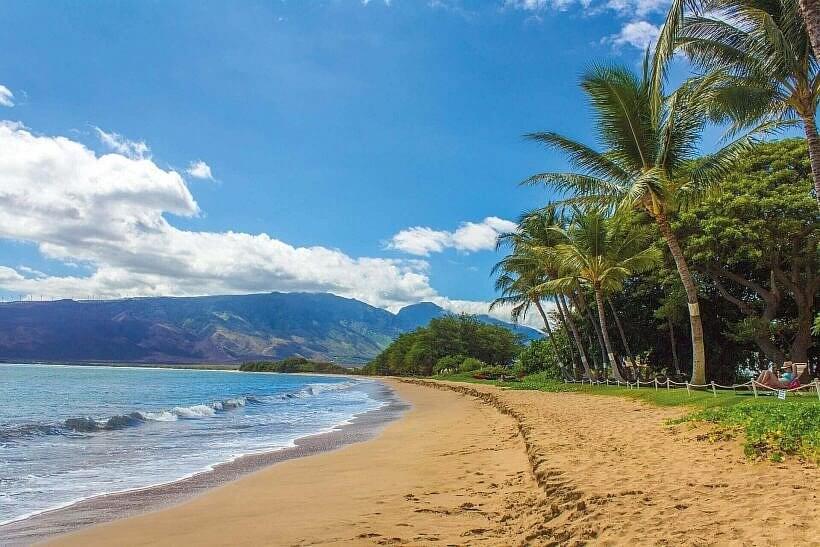 "beach 1630540 1920 820x547 - ""SPADKOBIERCY"" – KAUI HART HEMMINGS"