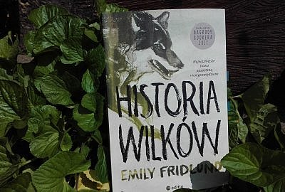 """IMG 20190815 115835 400x270 - """"Historia wilków"""" Emily Fridlund, czyli opowieść o samotności, Bogu i dojrzewaniu"""